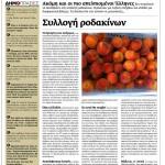 2014_06_15_Syllogi rodakinon_Makedonia_antilaikismos_Evropi_Latiniki Ameriki_aristera